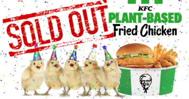 Vegan KFC chicken sells out in 6 hours