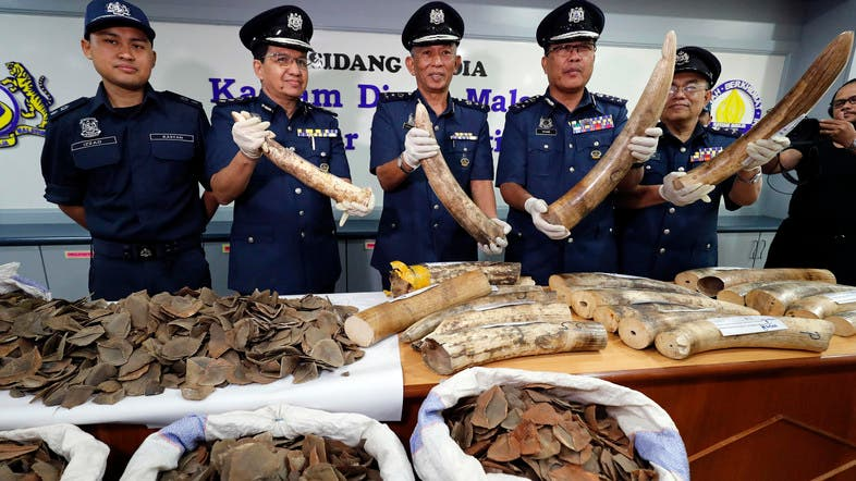Authorities in Vietnam have recovered 2 tons of ivory and pangolin scales destined for China and Vietnam