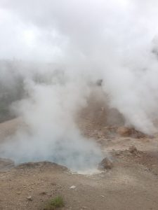 Geysers in Yellowstone | Vegan Nom Noms