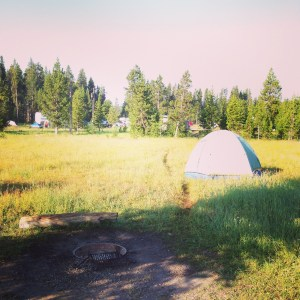 Camping in Yellowstone | Vegan Nom Noms