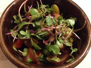 Microgreens Salad Northampton MA Farmers Market | Vegan Nom Noms