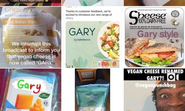 Sainsbury's Vegan Cheeses – Vegan MoFo Day 5