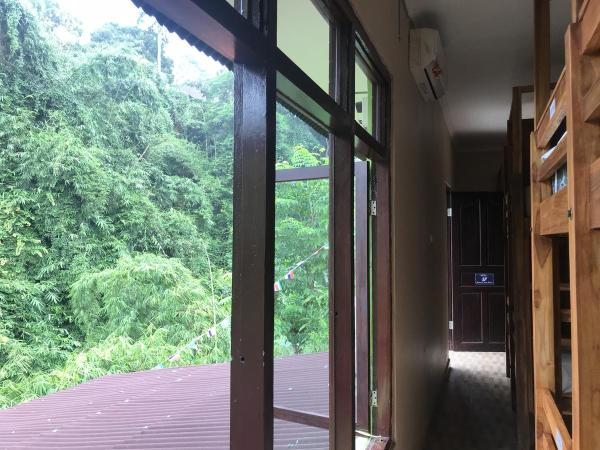 View from WW Backpackers Hostel Ubud Dorms