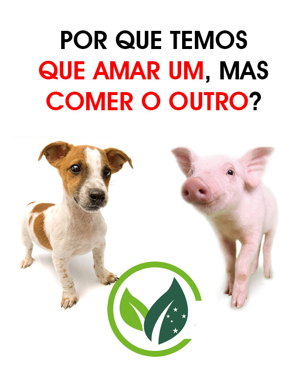 puppy_pig-lateral-posts-web