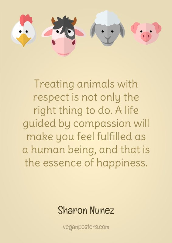 Hd Wallpapers With Love Quotes Treating Animals With Respect Is Not Only The Right Thing