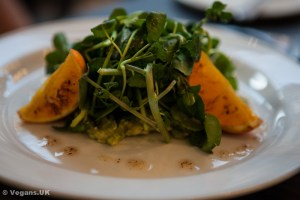 Watercress, orange and avocado salad