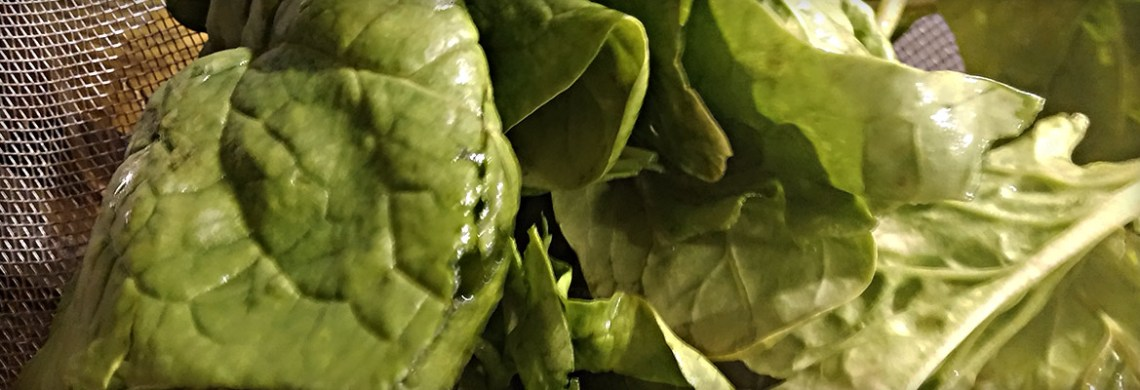 Spinat zu Kürbisfritten