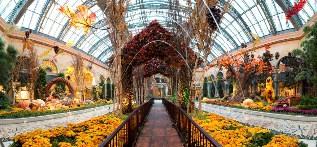 Bellagio Conservatory Main Entrance