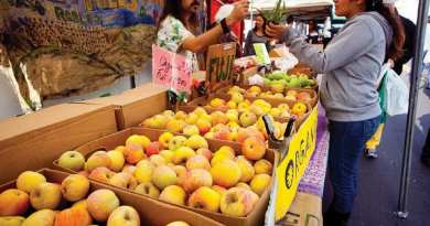 Apples at Fresh52