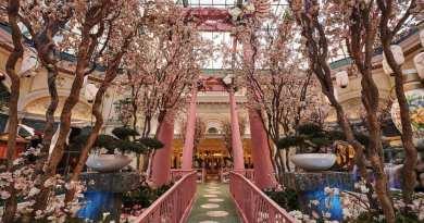 Bellagio's Conservatory & Botanical Gardens Celebrates Japan
