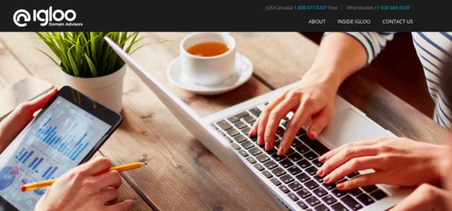 Изображение домашней страницы Igloo Domain Advisors
