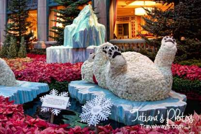 Polar Bear at Bellagio Winter Garden