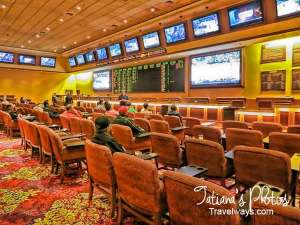 Sports Betting at South Point Casino, Las Vegas
