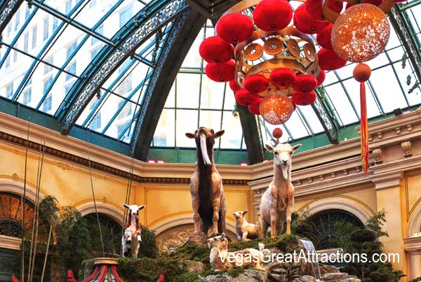 Goats display at the Chinese New Year, Bellagio