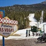 Las Vegas Ski and Snowboard Resort Party