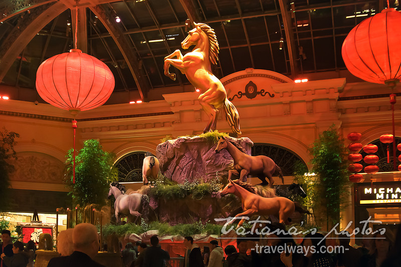 Las Vegas Chinese New Year 2014