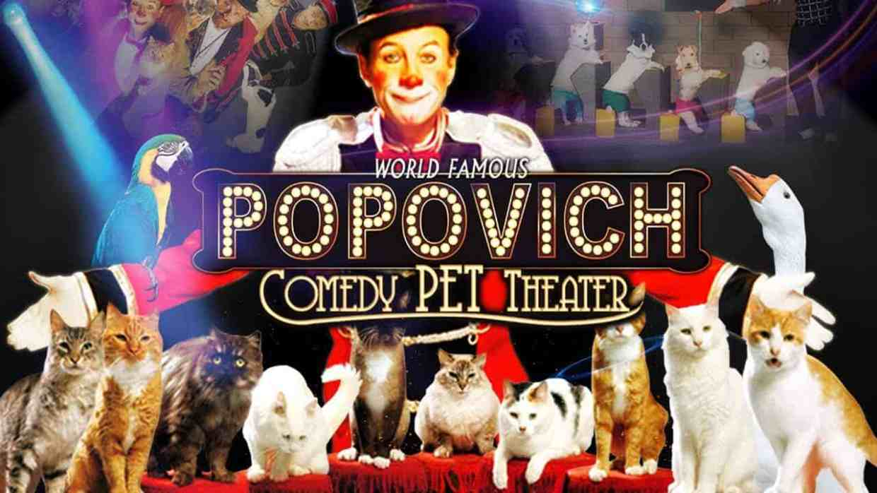 Gregory Popovich's Comedy Pet Theater - Family Activities in Las Vegas