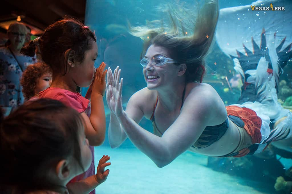 Mermaid Show at the Silverton Hotel - Free things to do in Las Vegas with kids