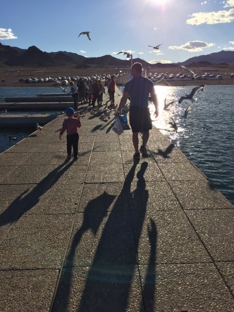 Father and son walking on boat harbor with seagulls flying at Lake Mead
