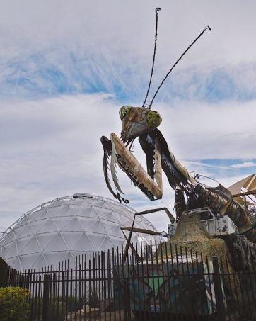 Downtown Container Park grasshopper and dome