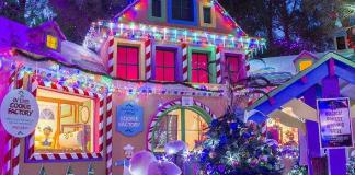 "Opportunity Village's ""Magical Forest"" to Open with Tree Lighting Ceremony, Nov. 23; Santa Claus to Fly in from North Pole"