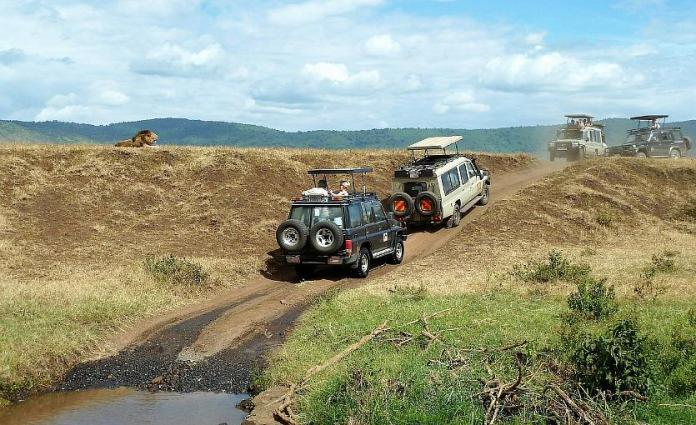 The 5 Mobile Apps You Need for a Great Holiday in Kenya