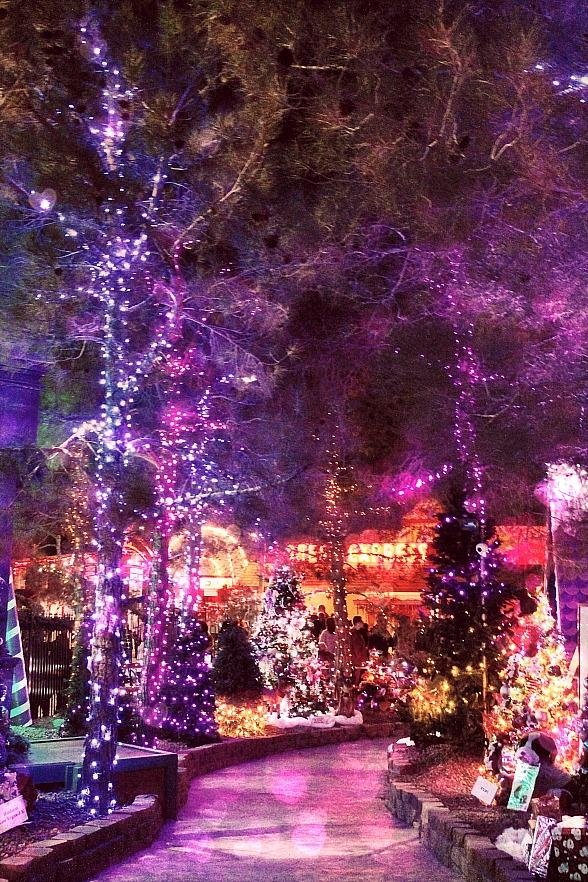 Opportunity Village Presents First-Ever Special Valentine's Day Weekend Events as The Magical Forest Opens to the Public