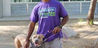 The Animal Foundation Waives Reclaim Fees for All Lost and Stray Animals from July 3-10