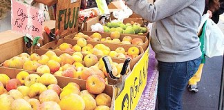 New Farmers Added to the Popular Fresh52 Farmers' & Artisan Market Boasting New Seasonal Items