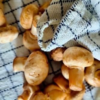 matar mushroom one pot recipe
