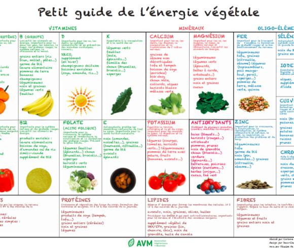 Petit guide de l'énergie végétale