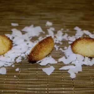 Petits gâteaux de Noël véganes : Rochers coco