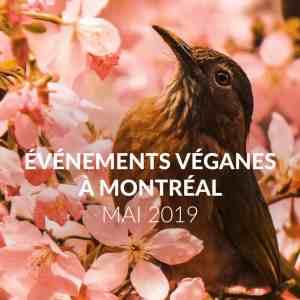 Les évènements véganes de mai 2019 à Montréal