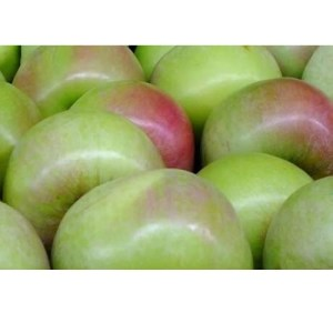 Granny Smith Apples Loose
