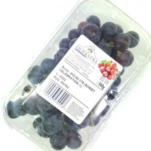 Red Grape Punnet 500g