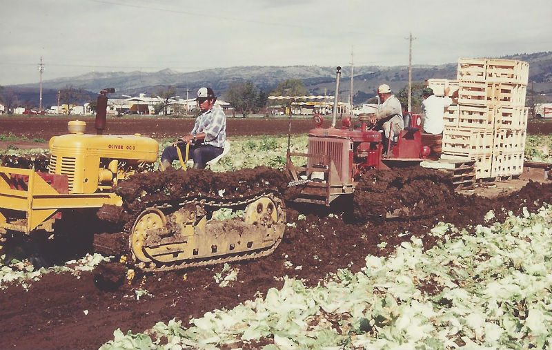 UesugiFarms  Vegetable Growers News