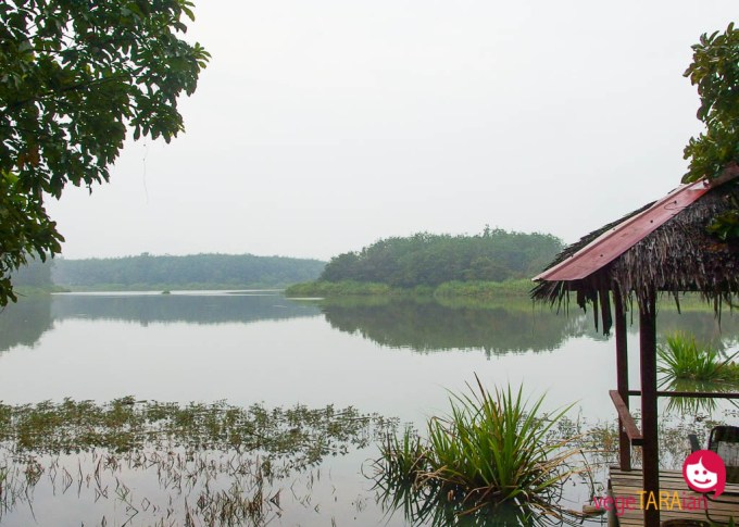 View of the lake at SukaSuka Lake Retreat, Perak Malaysia