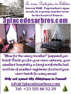 3 Place des Arbres, a vegetarian Christmas