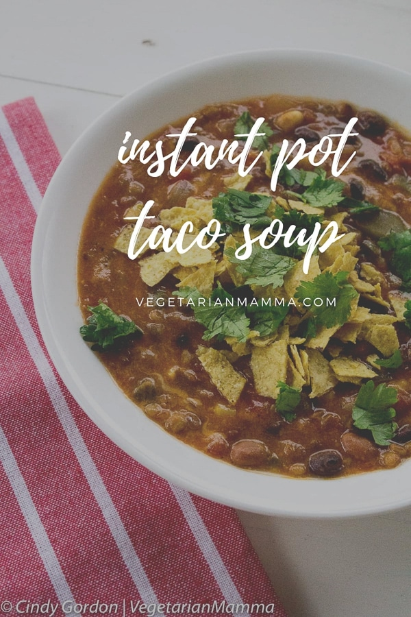 This Instant Pot Taco Soup is delicious, simple and gluten-free. You'll love the flavor of this vegetarian soup!