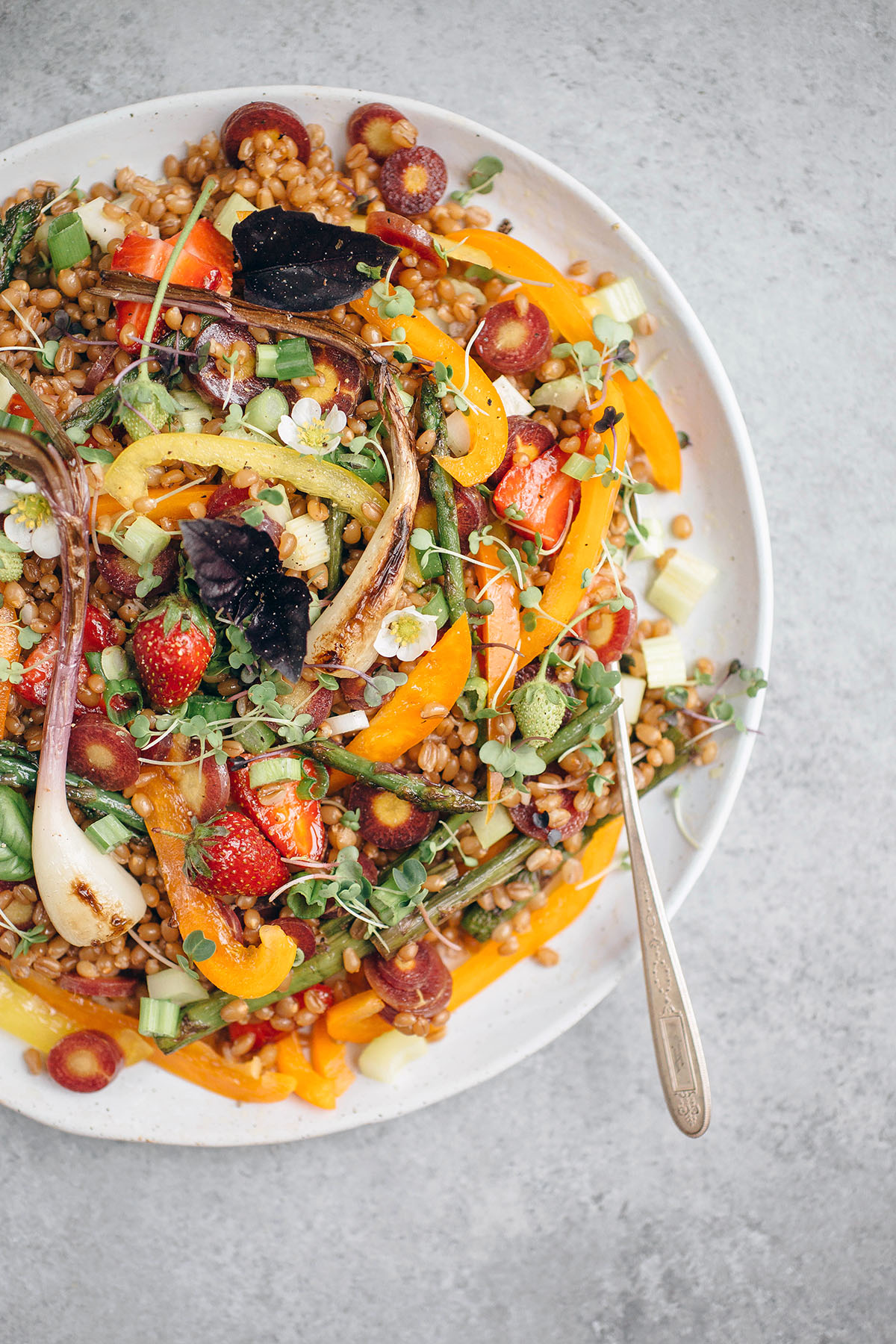 Vegetarian Spring Wheat berry Salad