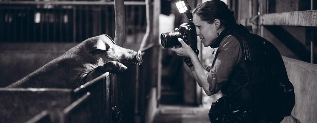 Jo-Anne McArthur og gris