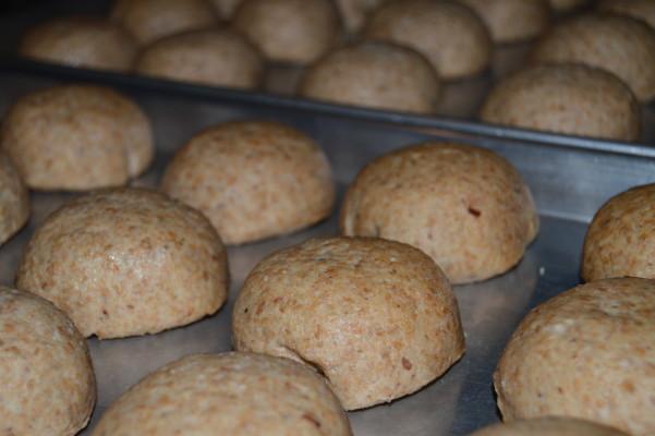 buns rising 04_sm