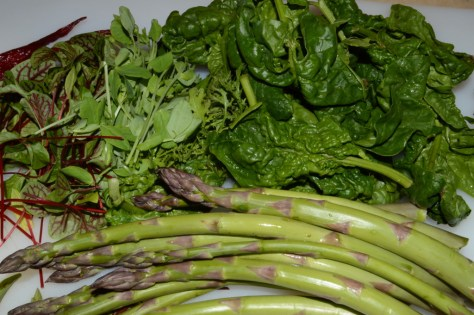My treasures from the Woodstock Farmers Market this week: sorrel, sweet pea and mustard microgreens, spinach and asparagus.