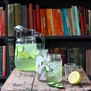 Cucumber Gin and Tonic – Shake Up Summer