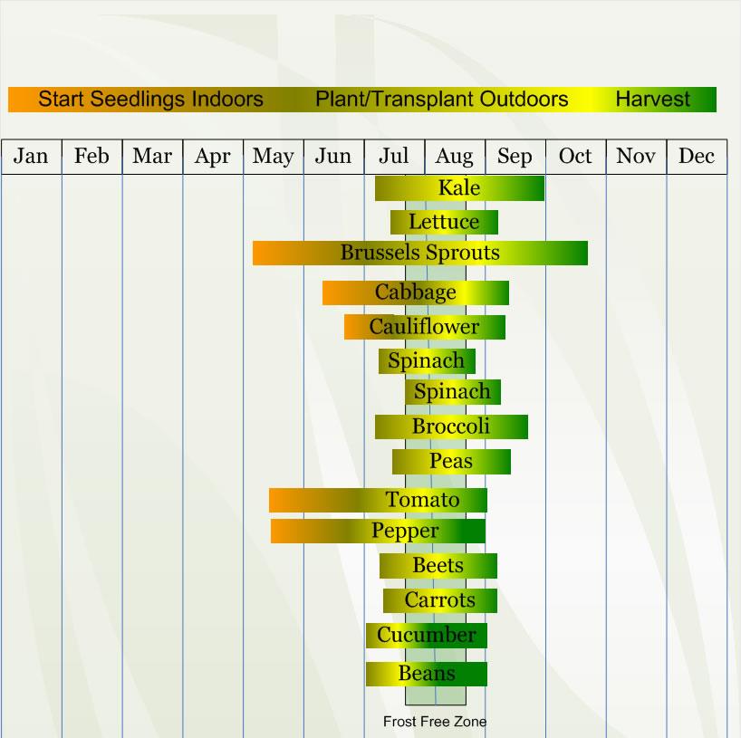 Zone 3 Vegetable Planting Calendar Schedule Veggieharvest Com