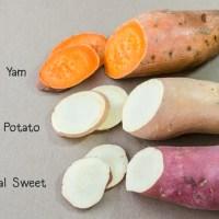 Sweet Potatoes vs. Yams