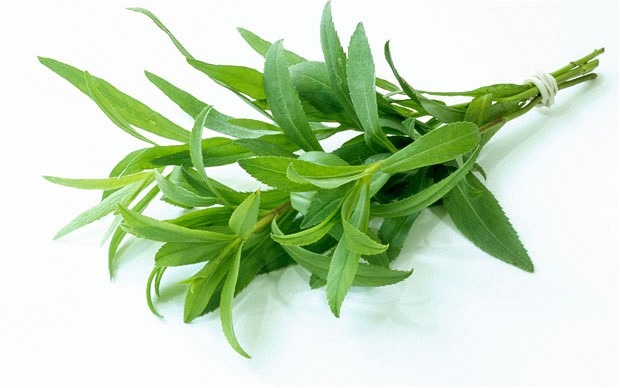 Image result for tarragon