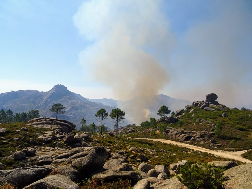 A Brush with Fire at Peneda-Geres National Park
