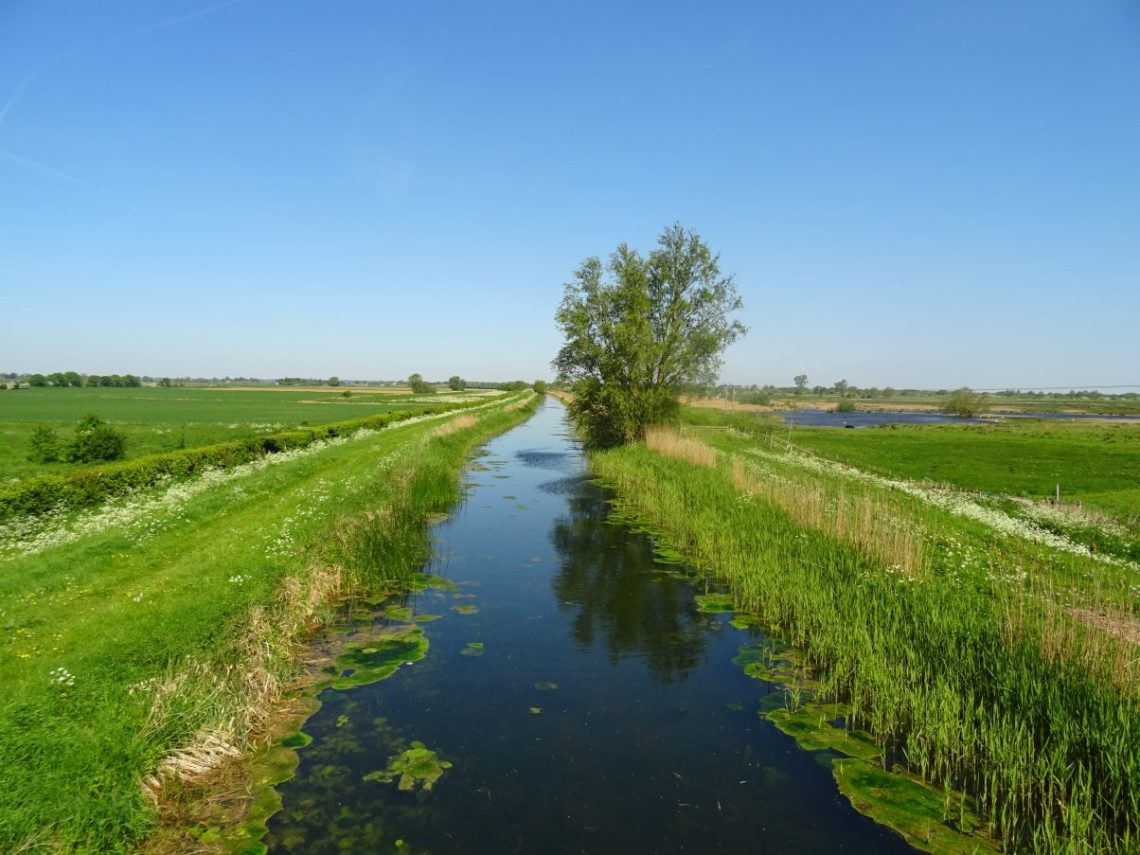The Cambridge to Ely Cycle Route