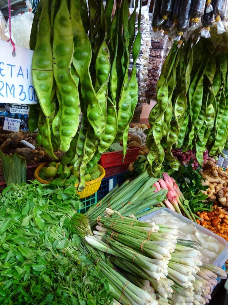 Vegan in Malaysia - an Ethical Eater's Guide